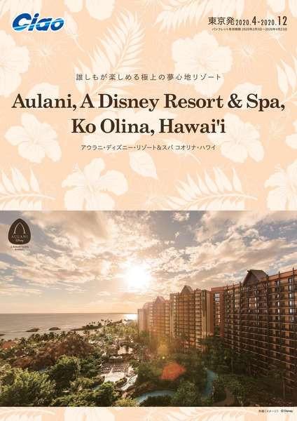 ハワイアウラニ・ディズニー・リゾート&スパ コオリナ・ハワイ